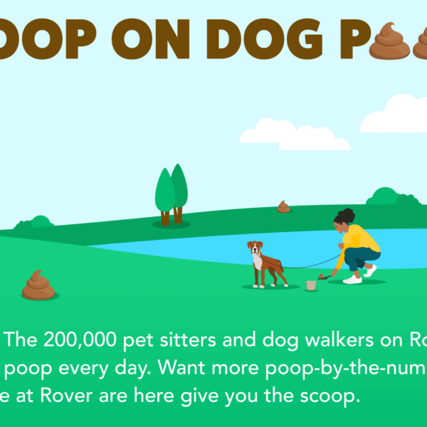 The Scoop on Dog Poop Infographic for Rover.com