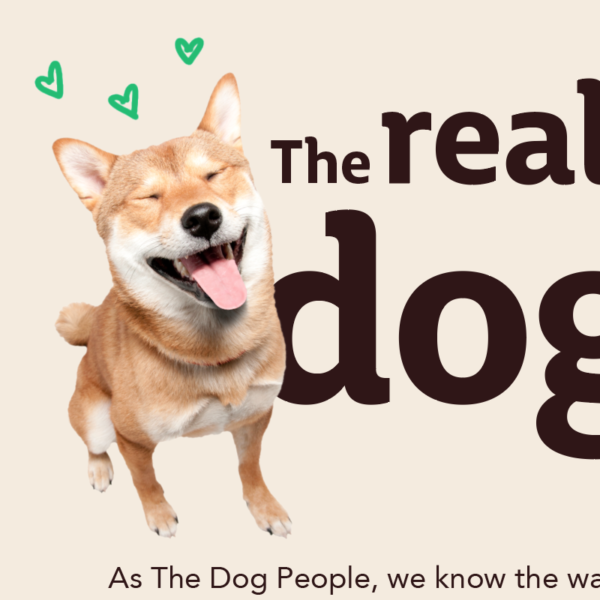 Infographic – the real power of dog love